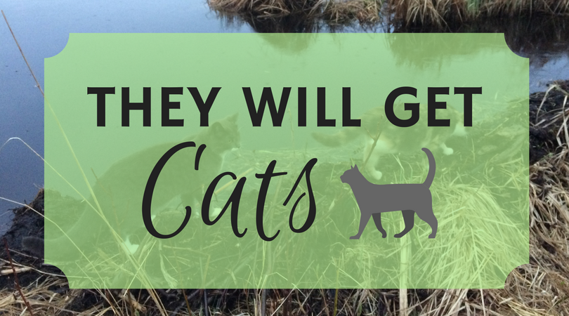 They Will Get Cats